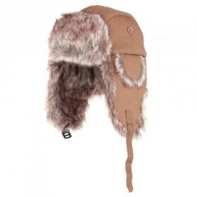 Alaska muts Bruin